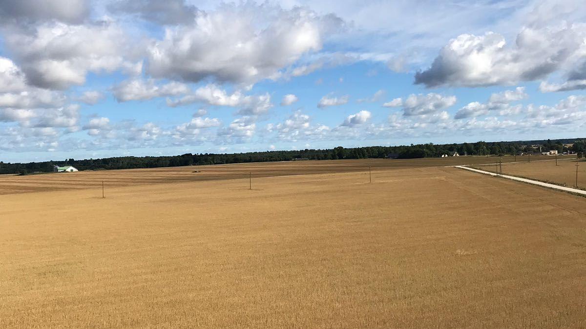 Blick auf Ackerflächen von weit oben